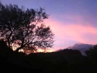 pink purple dusk sky hills far mountain solitude tree