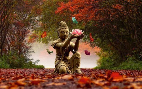 Kuan Yin Tara Buddha offering lotus of hope, red autumn leaves