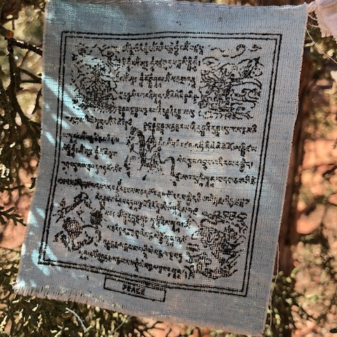 Vajra buddha family prayer flag - Peace