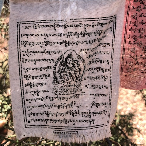 Buddha buddha family prayer flag - Purification
