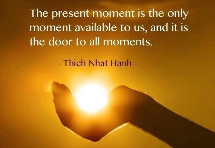 The present moment is the only moment available to us, and it is the door to all moments.