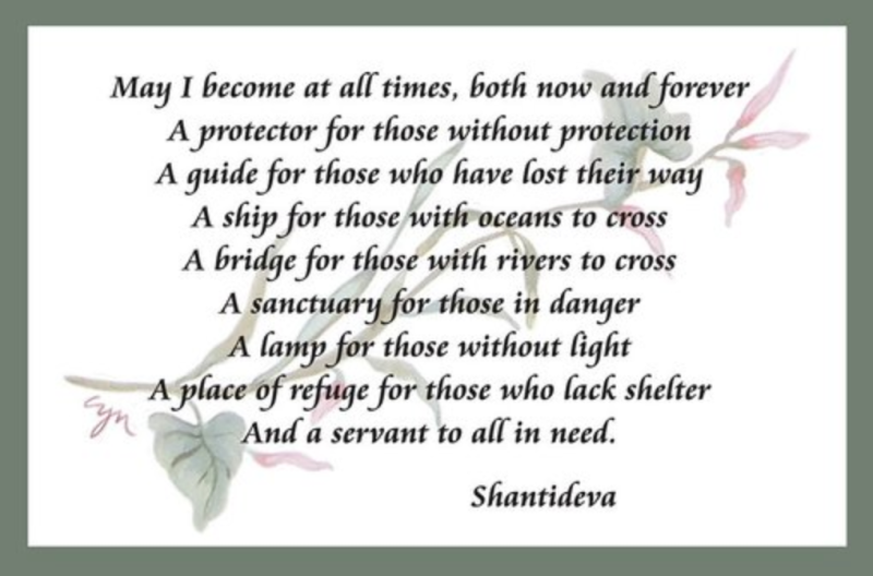 "May I become at all times, both now and forever, a protector for those without protection, a guide for those who have lost their way, a ship for those with oceans to cross . . . "" - Shantideva"
