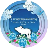 Female Earth Pig 2019