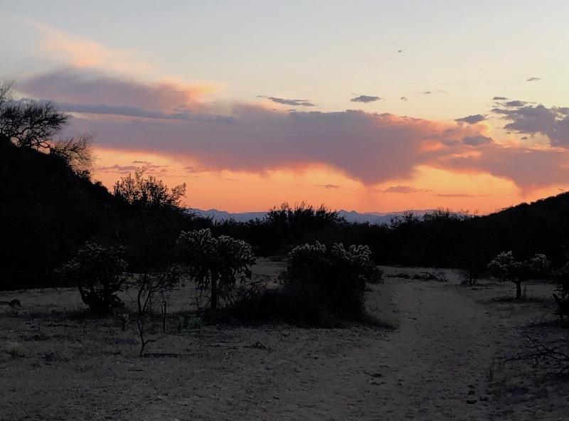 desert sunset in wash