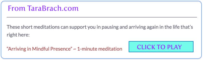 Click to play 1-minute Tara Brach meditation