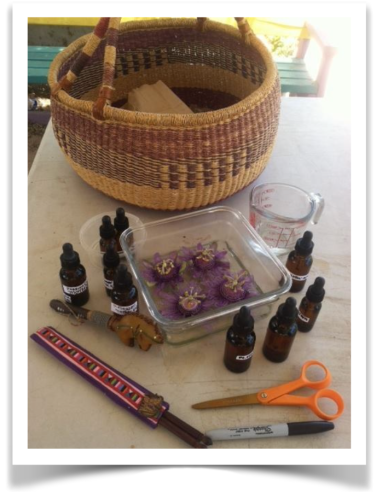 Gather materials for making flower essences
