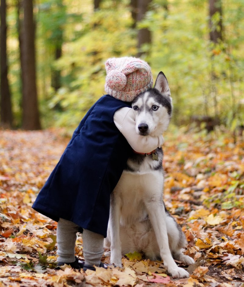 child hugging dog in autumn woods
